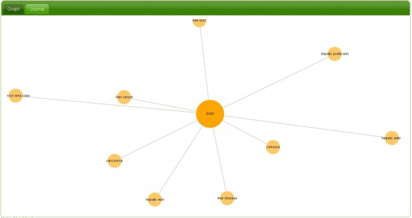 InstaGrok, lär dig genom att söka och relatera information